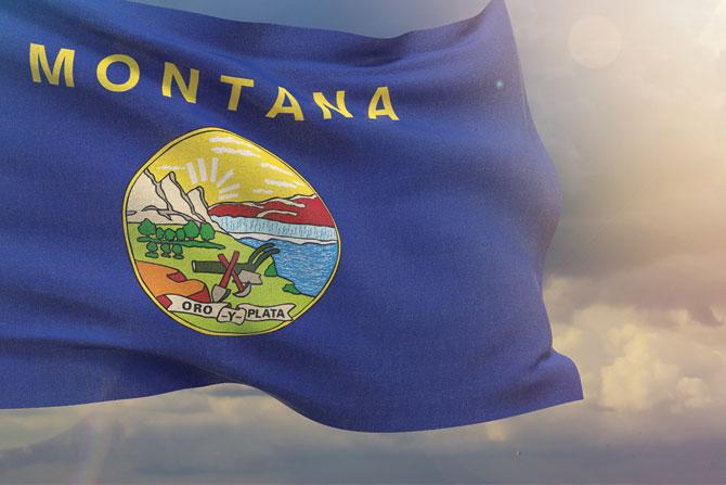Montana-Flag